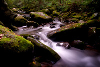 Small cascades in Great Smoky Mountain NP 0614